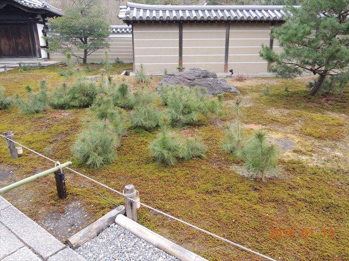 8庫裏前の庭園2