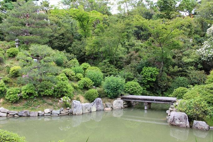 智積院 名勝庭園が素晴らしい癒やし空間♪御朱印も!