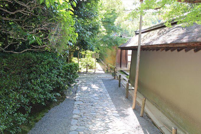 36龍安寺石庭の外側(南)