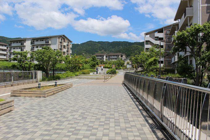 1アルプラザから醍醐寺へ向かう道