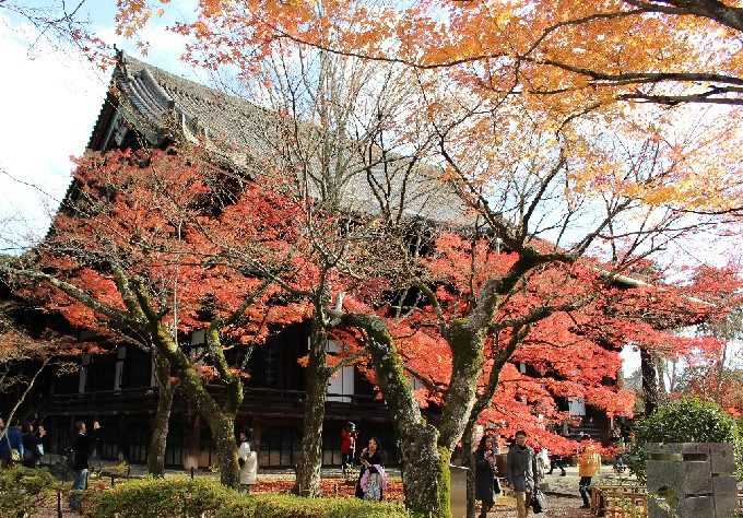 17本堂と紅葉