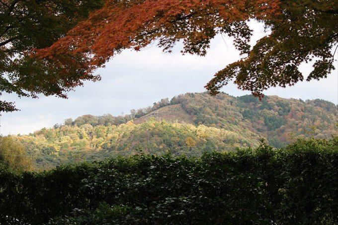 31涅槃の庭から眺める大文字山