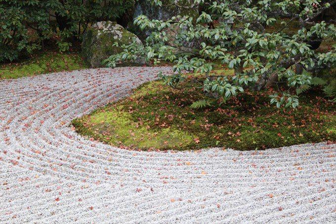 21南庭の散り紅葉