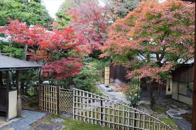 35庭と紅葉