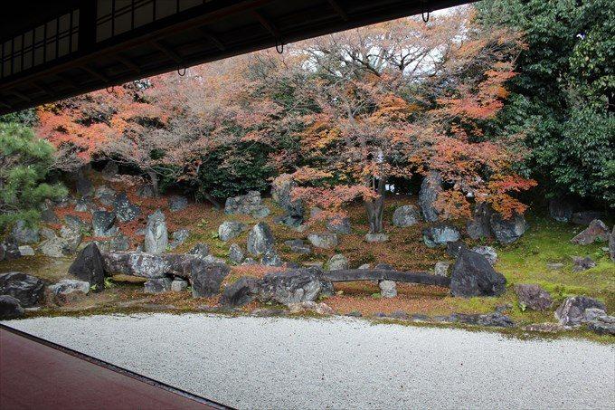 43圓徳院の北庭