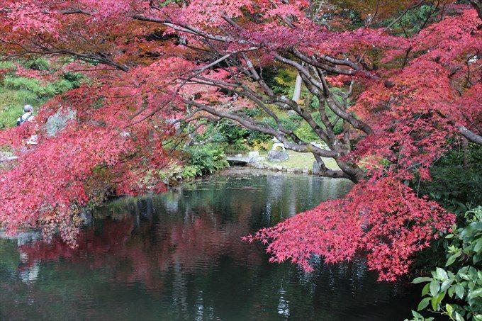 38紅葉と鎧の池