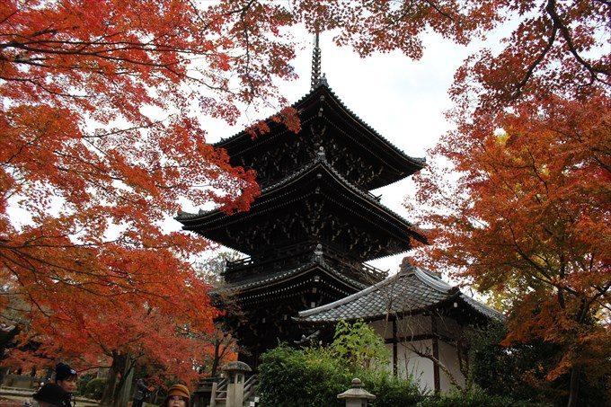 6三重塔と紅葉