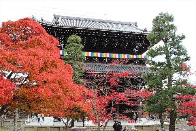 15山門と紅葉(内側から)