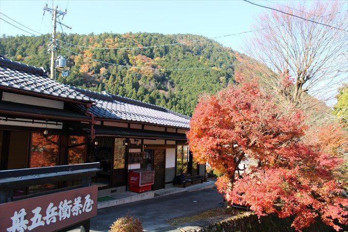4参道のお店と紅葉