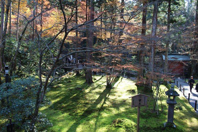 39往生極楽院からの眺め