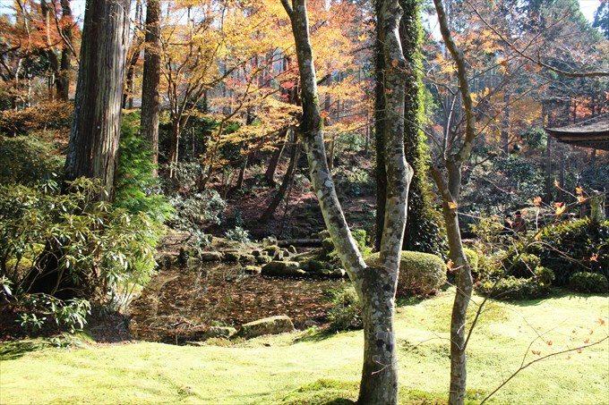 35有清園の池