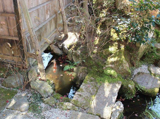 20外の池とつながる川