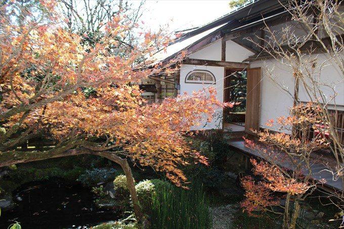 22宝泉院の鶴亀庭園の紅葉