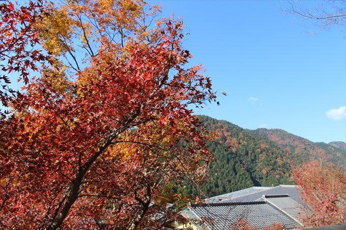 64大原と紅葉の景色