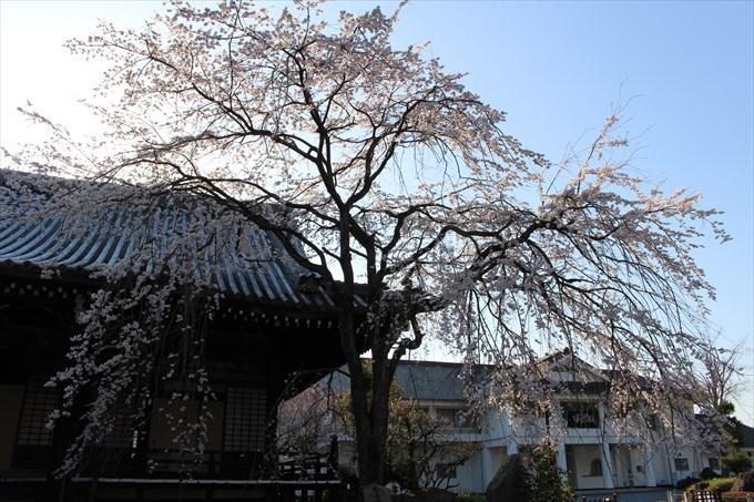 36修行道場(右)