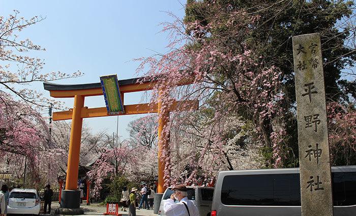 1平野神社の正面鳥居
