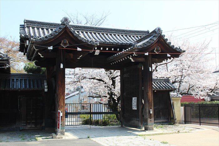 5立本寺正門を内側から