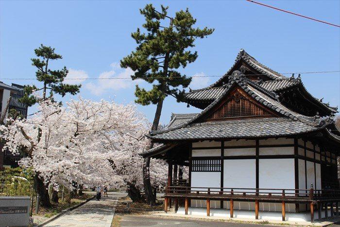 6立本寺正門をくぐり参道へ