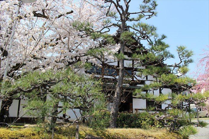 36立本寺方丈(寺務所)