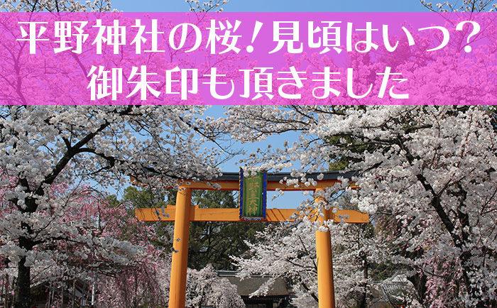 平野神社の桜タイトル用-01