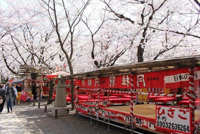 58平野神社の夜桜用の席2