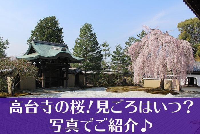 高台寺のしだれ桜タイトル-01
