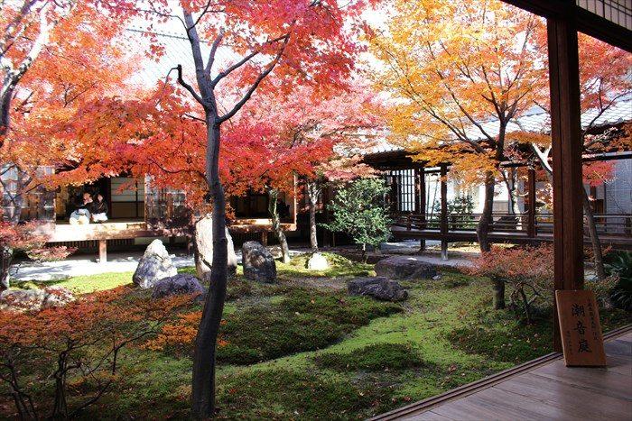 1潮音庭の南側からの紅葉