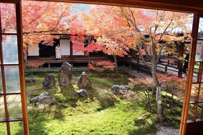 7潮音庭の北側と紅葉