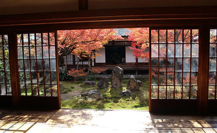 6大書院から見た潮音庭と紅葉
