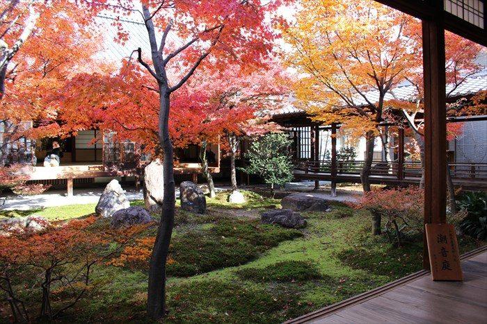 40潮音庭の紅葉の見頃:正面