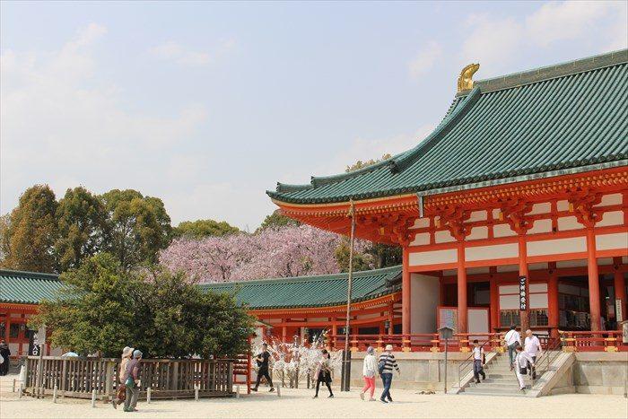 10.大極殿と桜