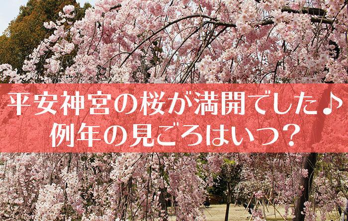 平安神宮の神苑の桜-01