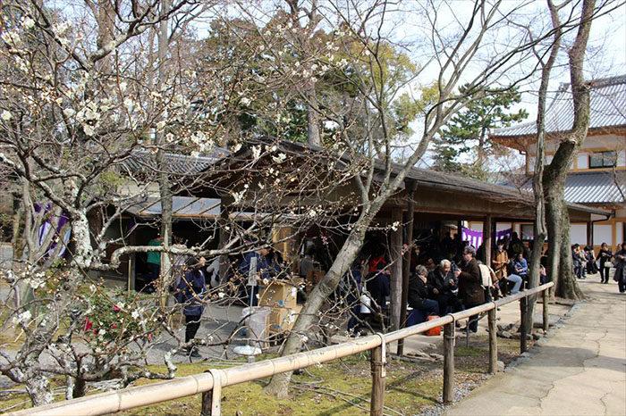 12.梅苑内の茶屋